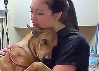 Un cățel salvat de la eutanasiere nu încetează să îi mulțumească femeii care l-a adoptat!