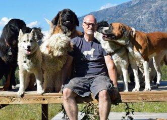 O viață dedicată salvării câinilor! Un cuplu a adoptat 45 de câini abandonați, oferindu-le o nouă casă