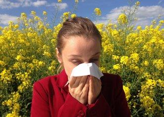 O prezentare generală a afecțiunilor alergice respiratorii cronice și acute. Cum putem gestiona alergiile?
