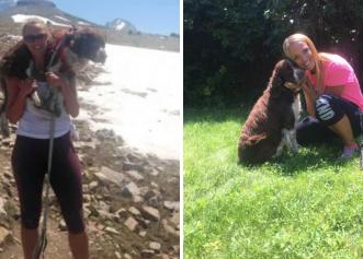 Incredibil! Un câine rănit în vârful muntelui este salvat de o femeie care l-a transportat 11 km în spate