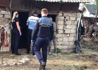 Caz șocant în comuna Odobești! Un cal epuizat căzut într-un șanț a fost bătut până la moarte