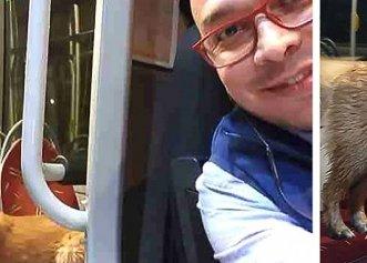 Salvarea unui cățel pierdut de familia sa! Un șofer de autobuz decide să intervină
