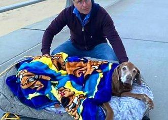 O ultimă plimbare în aer liber, cadoul unui bărbat pentru câinele său bătrân și bolnav!