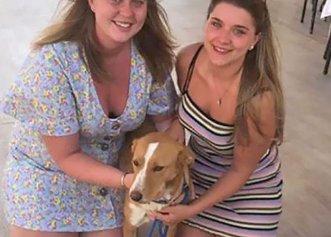 Plecată într-o vacanță, o tânără nu a putut să se întoarcă acasă fără câinele adorabil pe care l-a găsit abandonat!