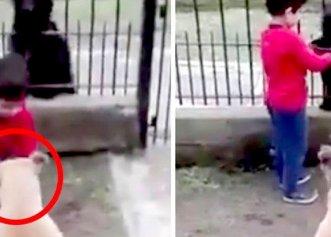 Gestul impresionant al unui copil pentru un câine de pe stradă! Modul în care tratează animalele