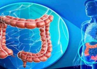 Alimente care opresc răspândirea cancerului de colon
