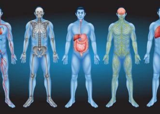 Surse nebănuite de toxine. De unde pot proveni toxinele acumulate în organism?
