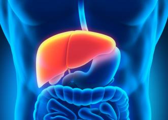 Cum îți menții ficatul sănătos? Sfaturi utile pentru o bună funcționare