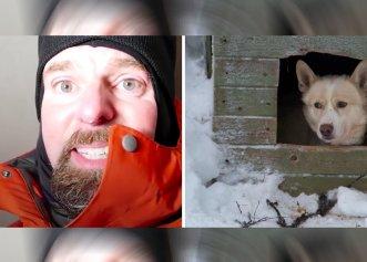 Experimentul inedit al unui veterinar! El a vrut să vadă condițiile din timpul iernii, într-un adăpost pentru câini