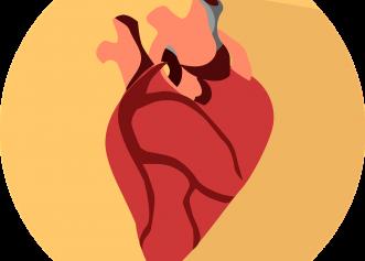 Ce simți când inima nu primește suficient sânge. Semne de alarmă că o arteră e îngustată