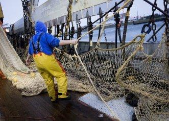 Curtea Europeană de Justiție a interzis pescuitul cu șocuri electrice! Țara cea mai afectată de această decizie