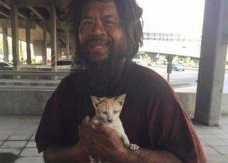 Soluția pentru prevenirea furtului de pisici! Țara unde va deveni obligatorie microciparea felinelor