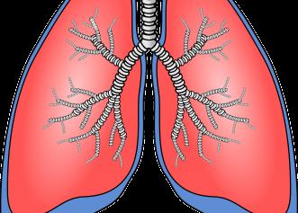 Exerciții pentru plămâni. Îmbunătățesc capacitatea respiratorie, mai ales la cei care au avut Covid-19