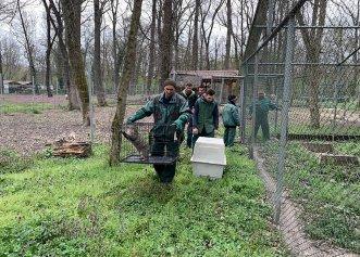 A început procesul de mutare a animalelor de la grădina zoologică din Timișoara! Partenerii la care ajung