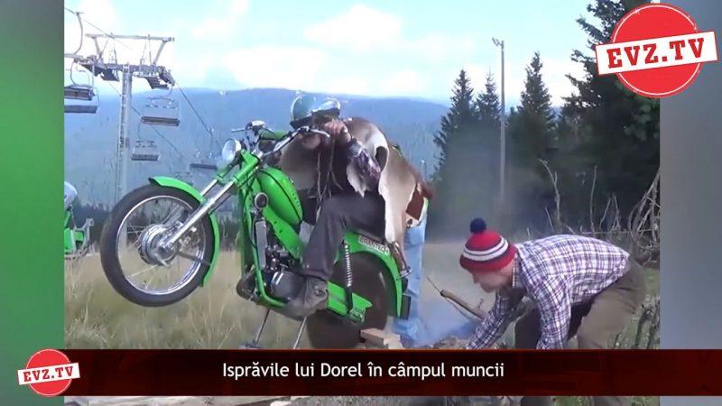 Isprăvile lui Dorel în câmpul muncii. Nu poți să crezi la ce s-a gândit