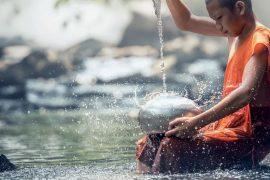 Rețeta budistă, veche de 5000 de ani