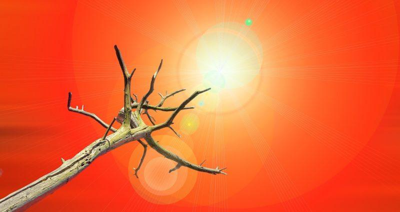 Spania a declarat starea de urgenta climatică