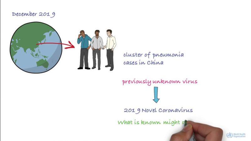 Află totul despre coronavirus de la World Health Organization